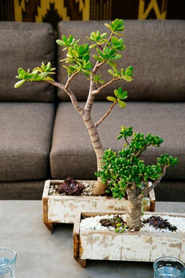 Самодельный деревянный горшок